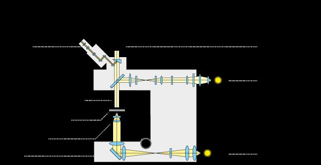 trajet optique d'un microscope droit