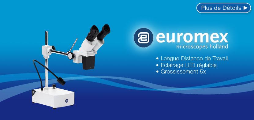 Loupe Binoculaire EUROMEX Longue Distance de Travail
