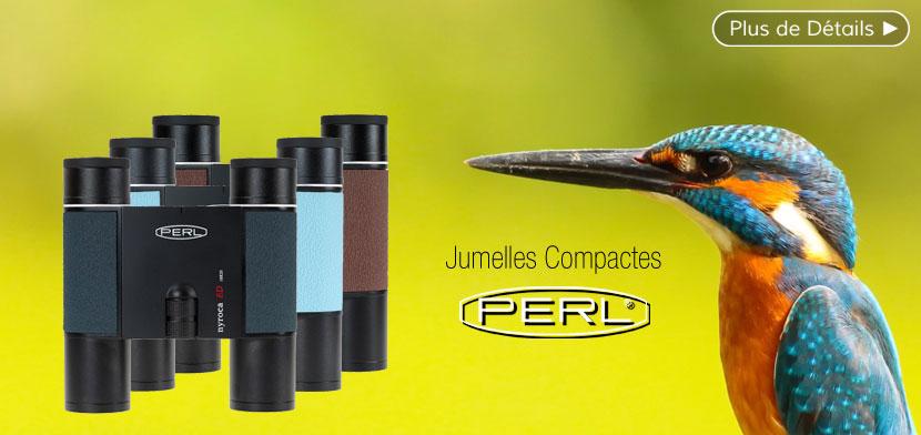 Jumelles PERL Nyroca Mini ED 10x25 anthracite